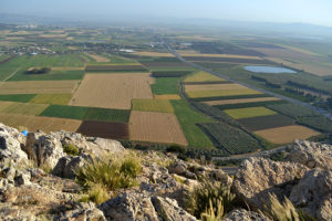 Disciple Making Lessons from Israel: Great Things Can Come from Little Things